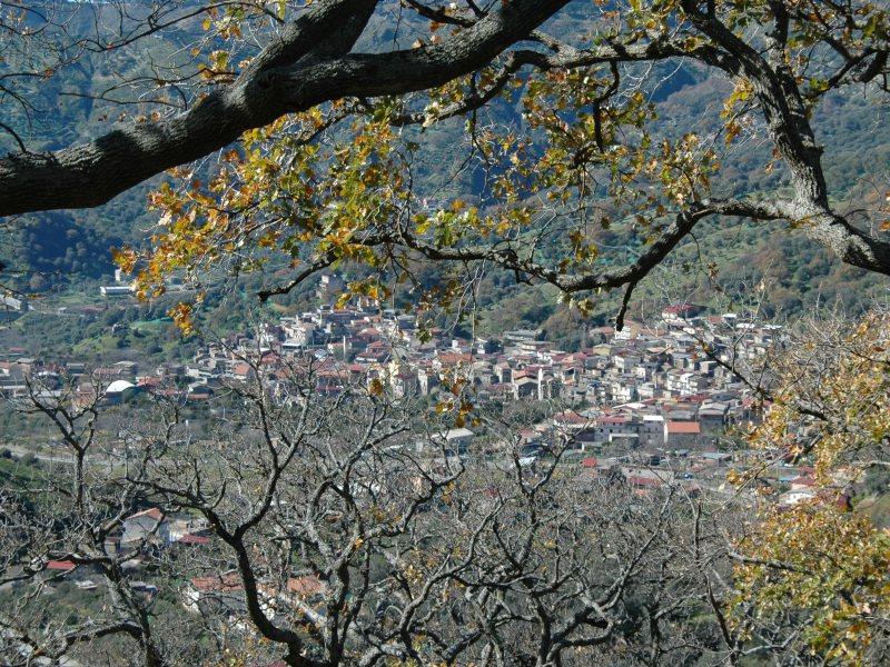 ESCURSIONE a monte di Fossato